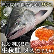 生秋鮭メス